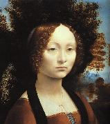 Leonardo  Da Vinci Portrait of Ginerva de'Benci Spain oil painting reproduction