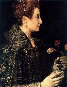 ANGUISSOLA  Sofonisba Profile Portrait of a Young Woman oil painting artist