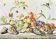 AST, Balthasar van der Still-life ggg oil painting picture wholesale