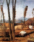 BELLINI, Giovanni Madonna of the Meadow (detail) ixtn oil painting picture wholesale