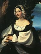 CORNELISZ VAN OOSTSANEN, Jacob Portrait of a Gentlewoman df oil