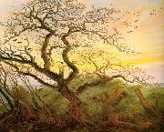 Caspar David Friedrich The Tree of Crows oil