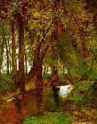 Charles Blechen Woodland with Brook Spain oil painting reproduction