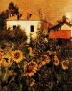 Gustave Caillebotte Sunflowers, Garden at Petit Gennevilliers Spain oil painting reproduction
