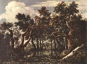 Jacob van Ruisdael The Marsh in a Forest oil painting picture wholesale
