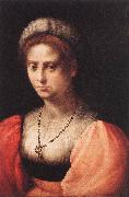 PULIGO, Domenico Portrait of a Lady agf oil painting artist