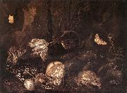SCHRIECK, Otto Marseus van Still-Life with Insects and Amphibians ar oil painting artist