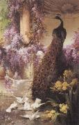 Eugene Bidau A Peacock and Doves in a Garden oil painting picture wholesale