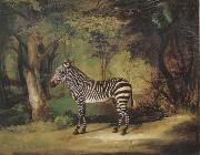 George Stubbs Horse oil painting picture wholesale