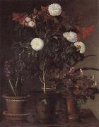 Jensen Johan Gardenia and Amaryllis oil painting picture wholesale