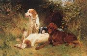 unknow artist Some Dogs oil painting picture wholesale