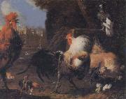 unknow artist Cock oil painting picture wholesale
