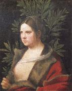 Giorgione Portrait of a young woman oil painting artist