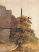 Albrecht Durer A Tree in a Quarry oil painting picture wholesale