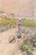 Carl Larsson In the Kitchen Garden oil painting picture wholesale