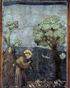 GIOTTO di Bondone Sermon to the Birds oil painting picture wholesale