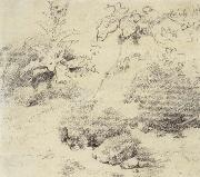 Thomas Gainsborough Study for a Foreground,a Bank with Weeds and Thistles oil painting picture wholesale