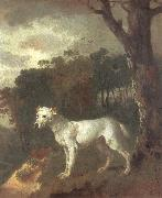 Thomas Gainsborough Bumper,a Bull Terrier oil painting picture wholesale