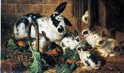 unknow artist Rabbits 198 oil painting reproduction