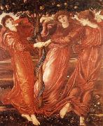 Sir Edward Coley Burne-Jones The Garden of the Hesperides oil painting picture wholesale