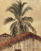 Frederic E.Church Palm Tres and Housetops,Ecuador oil painting picture wholesale