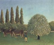 Henri Rousseau THe Pasture oil painting picture wholesale