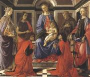 Sandro Botticelli Madonna enthroned with Child and Saints (Mary Magdalene,John the Baptist,Cosmas and Damien,Sts Francis and Catherine of Alexandria) oil painting picture wholesale