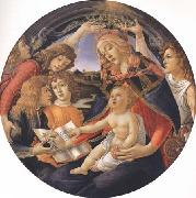 Sandro Botticelli Madonna of the Magnificat oil painting picture wholesale