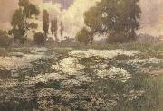 unknow artist Field of Daisies oil painting picture wholesale