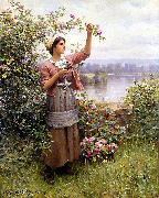 Daniel Ridgeway Knight Gathering Roses oil