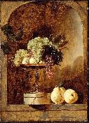 Frans Snyders Grapes, Peaches and Quinces in a Niche oil painting reproduction