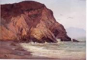 Henry Otto Wix Rocky Coast with Birds oil painting