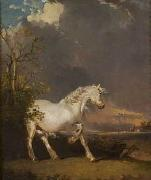 James Ward A horse in a landscape startled by lightning oil painting