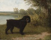 Jacques-Laurent Agasse A black water dog with a stick by a lake oil painting reproduction