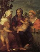 Andrea del Sarto Madonna and Child with St.Catherine oil painting artist