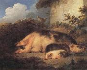 George Morland A Sow and Her Piglets oil painting artist