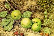 Hill, John William Still Life with Fruit and Fly oil painting artist