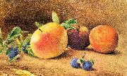 Hill, John William Study of Fruit oil painting artist