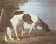 Jacques-Laurent Agasse Foxhounds in a Landscape oil painting picture wholesale