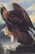 John James Audubon Golden Eagle oil painting artist
