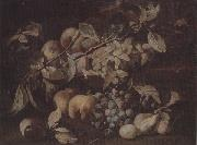 unknow artist Still life of red and white grapes,peaches and plums,on a stone ledge oil painting picture wholesale