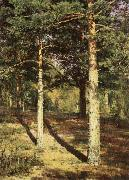 Ivan Shishkin Pine Wood Illuminated by the Sun oil painting
