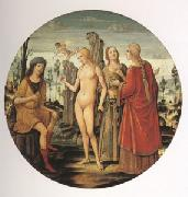 Girolamo di Benvenuto The Judgment of Paris (mk05) oil painting picture wholesale
