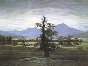 Caspar David Friedrich The Lone Tree (mk09`) oil painting picture wholesale