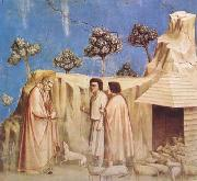 GIOTTO di Bondone Joachim Takes Refuge in the Wilderness (mk08) oil painting picture wholesale