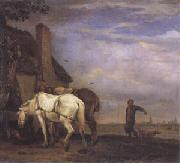 POTTER, Paulus Two Drafthorses in Front of a Cottage (mk05) oil painting picture wholesale