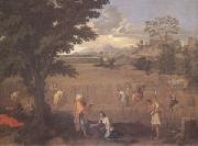 Poussin Summer or Ruth and Boas (mk05) oil painting picture wholesale