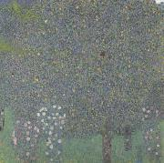 Gustav Klimt Rose Bushes Under the Trees (mk20) oil painting picture wholesale