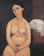 Amedeo Modigliani Seated Nude (mk39) oil painting picture wholesale