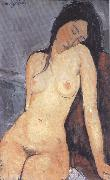 Amedeo Modigliani Seted Nude (mk39) oil painting picture wholesale